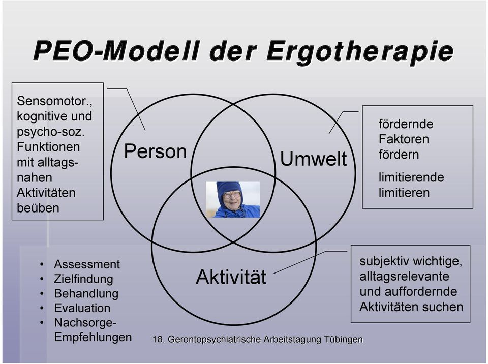 fördern limitierende limitieren Assessment Zielfindung Behandlung Evaluation
