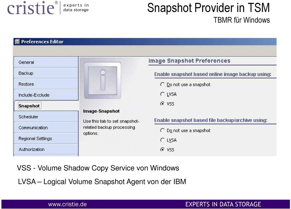 Service von Windows LVSA Logical