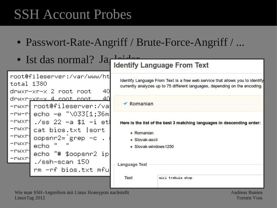 Brute-Force-Angriff /.