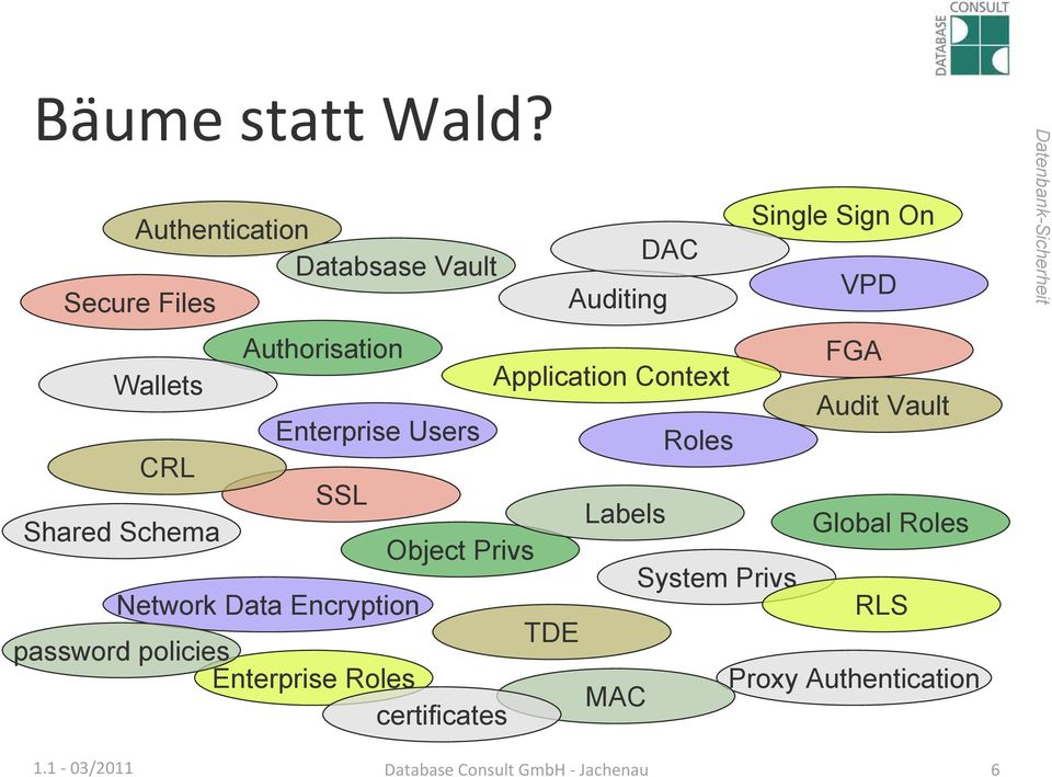 Authorisation FGA Application Context Audit Vault Enterprise Users Roles CRL Shared Schema SSL