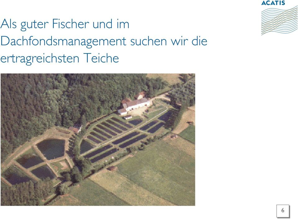 Dachfondsmanagement