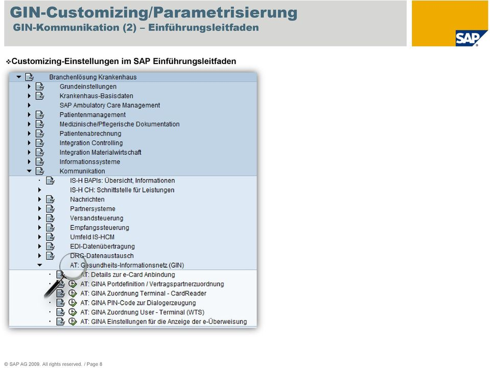 Customizing-Einstellungen im SAP