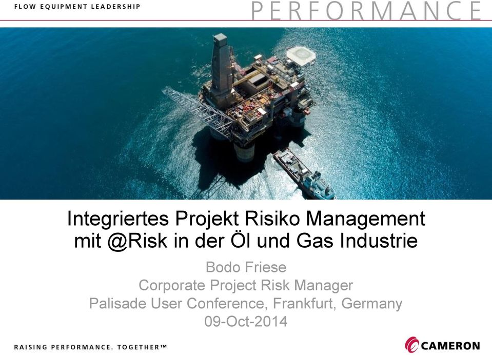 Friese Corporate Project Risk Manager