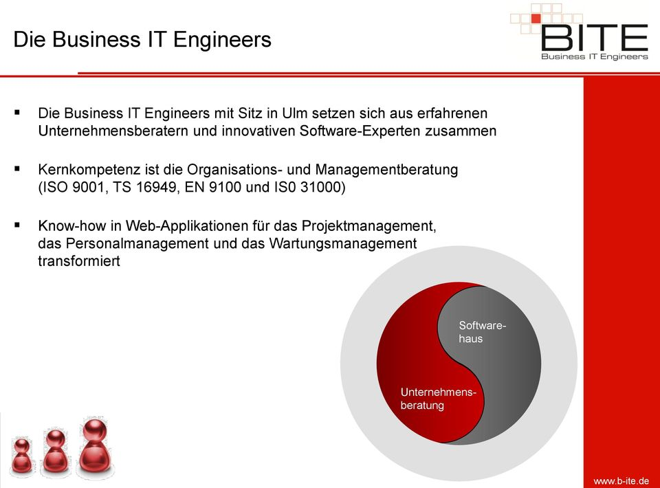 Managementberatung (ISO 9001, TS 16949, EN 9100 und IS0 31000) Know-how in Web-Applikationen für das