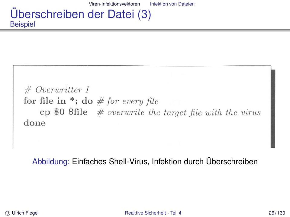 Einfaches Shell-Virus, Infektion durch
