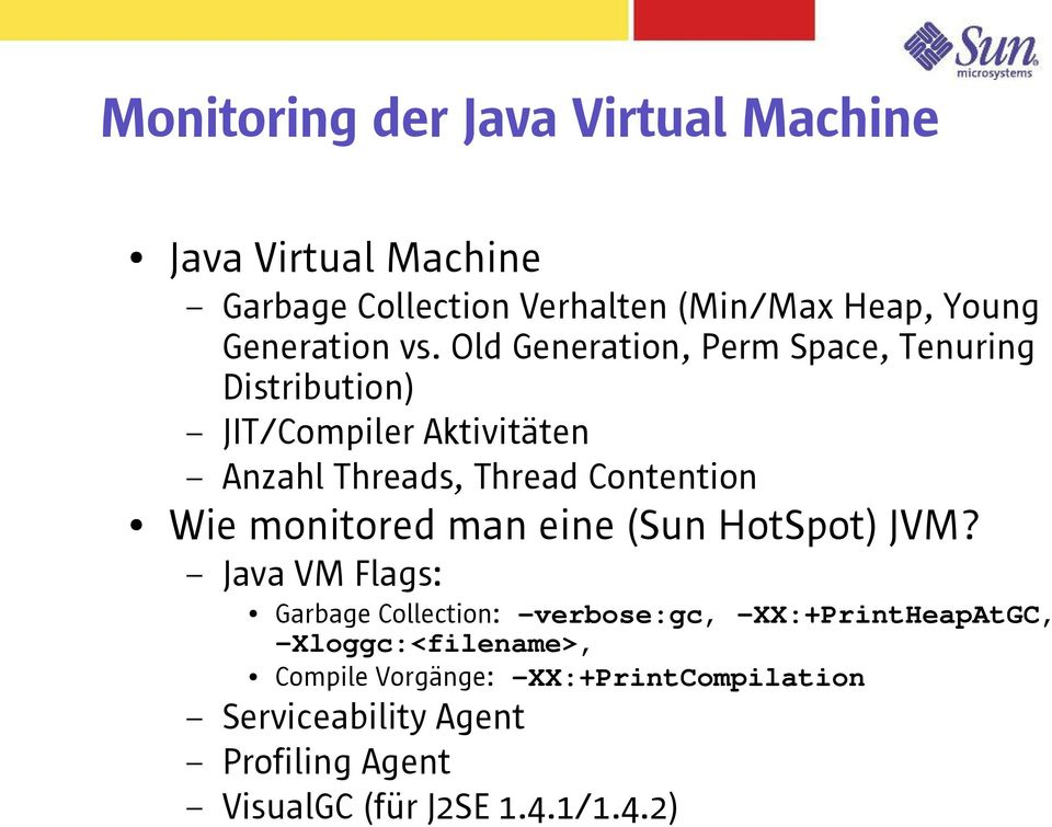 monitored man eine (Sun HotSpot) JVM?