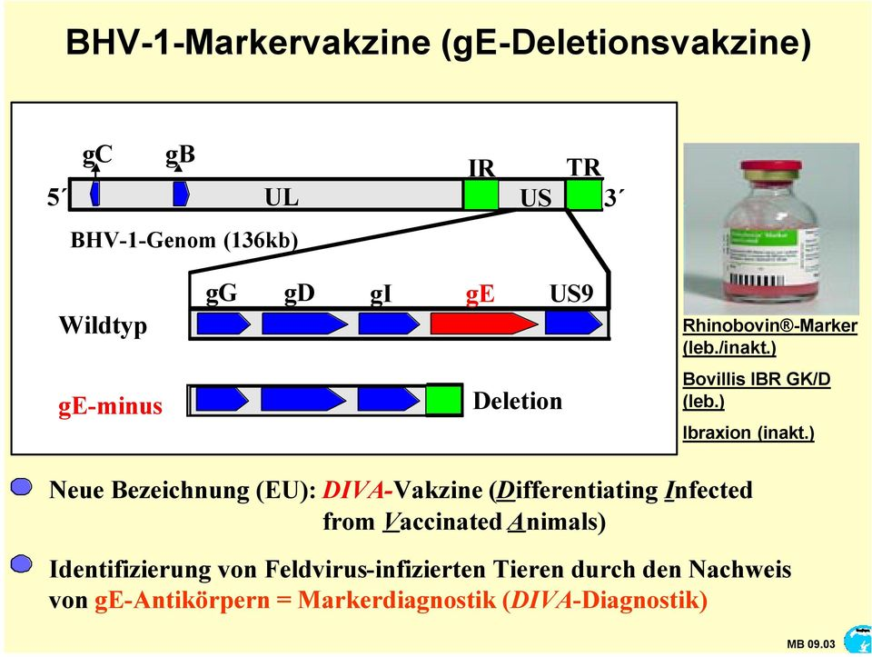 ) Neue Bezeichnung (EU): DIVA-Vakzine (Differentiating Infected from Vaccinated Animals) Identifizierung