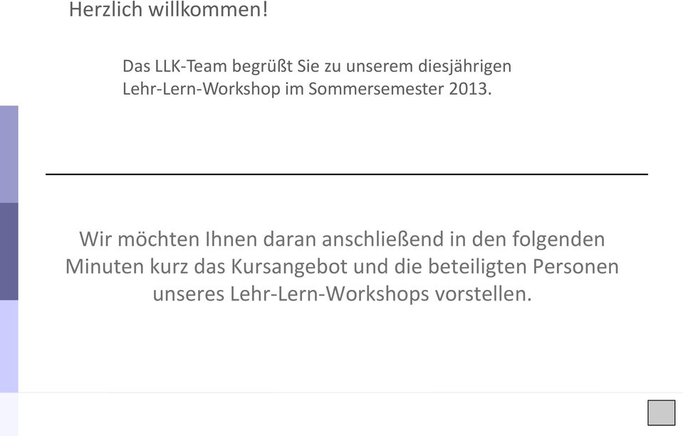 Lehr-Lern-Workshop im Sommersemester 2013.