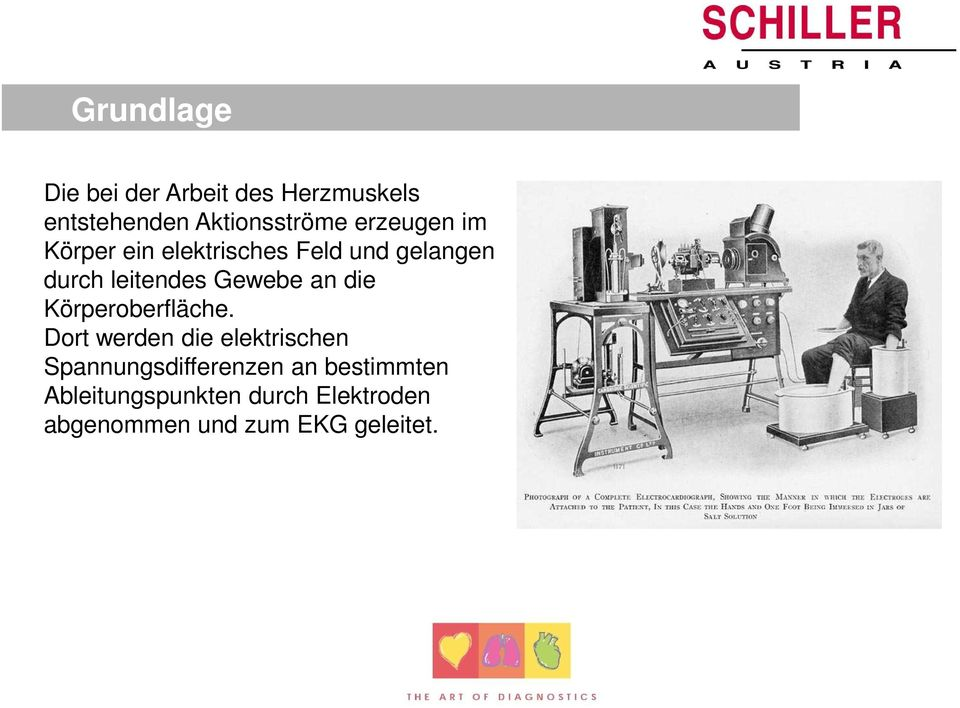 grundlagen der ekg interpretation pdf. Black Bedroom Furniture Sets. Home Design Ideas