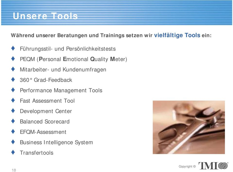 und Kundenumfragen 360 Grad-Feedback Performance Management Tools Fast Assessment Tool