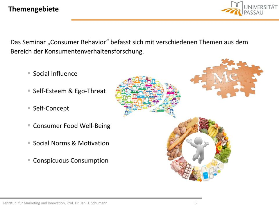 Social Influence Self-Esteem & Ego-Threat Self-Concept Consumer Food Well-Being