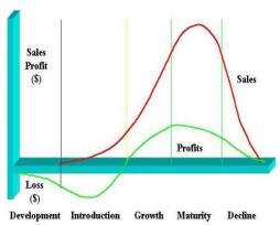 Deliverables Product Life Cycle Type of Industry Post merger integration Turnaround Growth