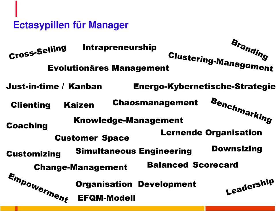 Chaosmanagement Knowledge-Management Coaching Lernende Organisation Customer Space Downsizing Customizing