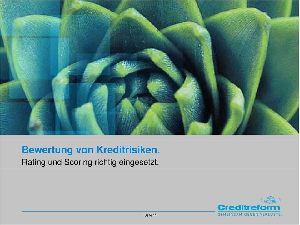 Rating und Scoring