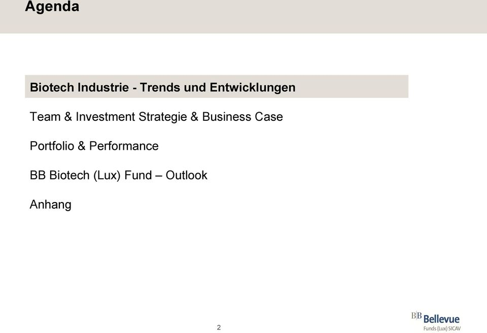 Strategie & Business Case Portfolio &