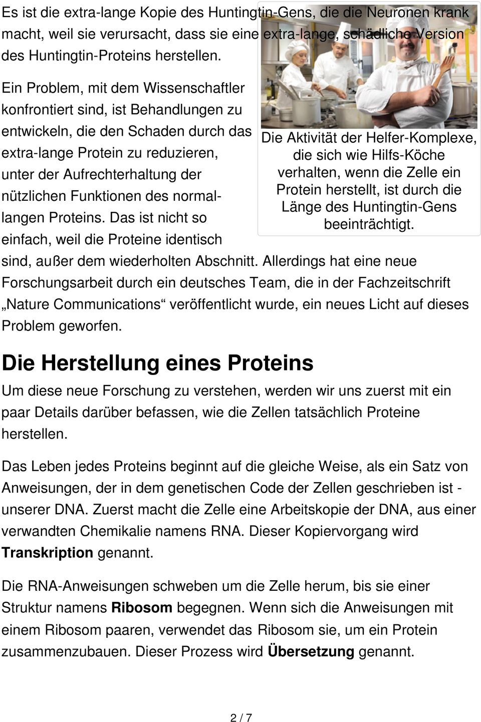Funktionen des normallangen Proteins.