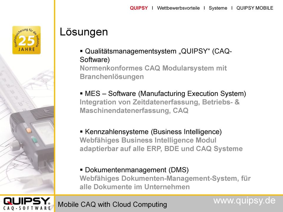 Maschinendatenerfassung, CAQ Kennzahlensysteme (Business Intelligence) Webfähiges Business Intelligence Modul