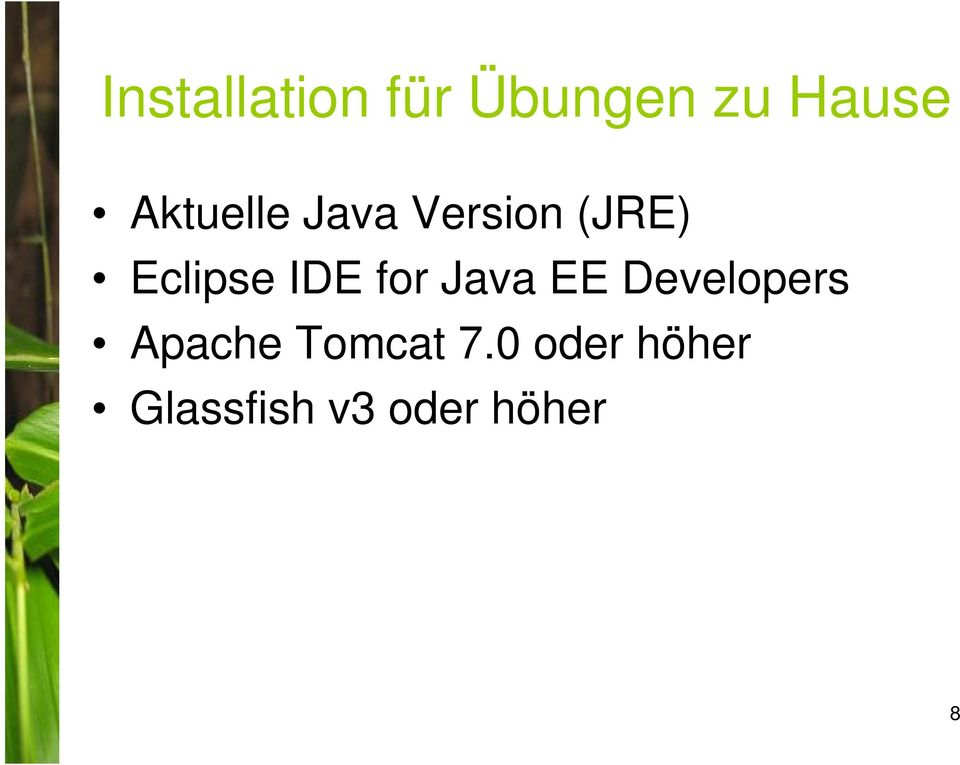 IDE for Java EE Developers Apache