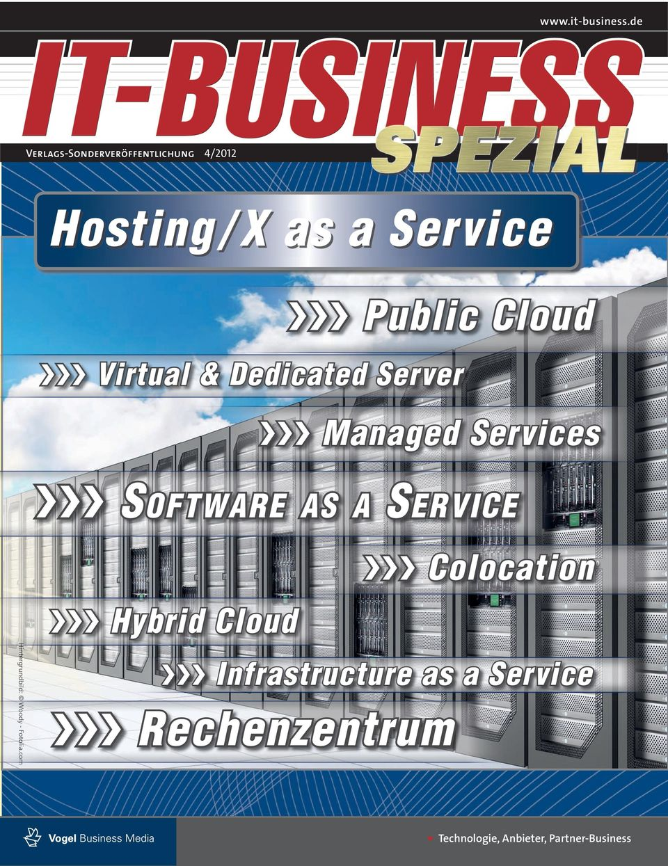 Dedicated Server VVV Managed Services VVV S OFTWARE AS A S ERVICE VVV Colocation Hiin Hin H inte