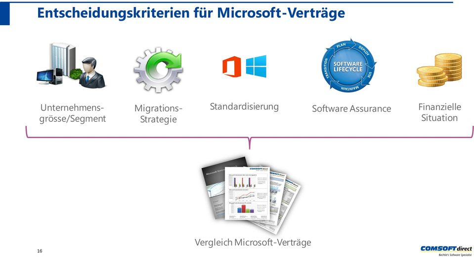 Strategie Standardisierung Software Assurance