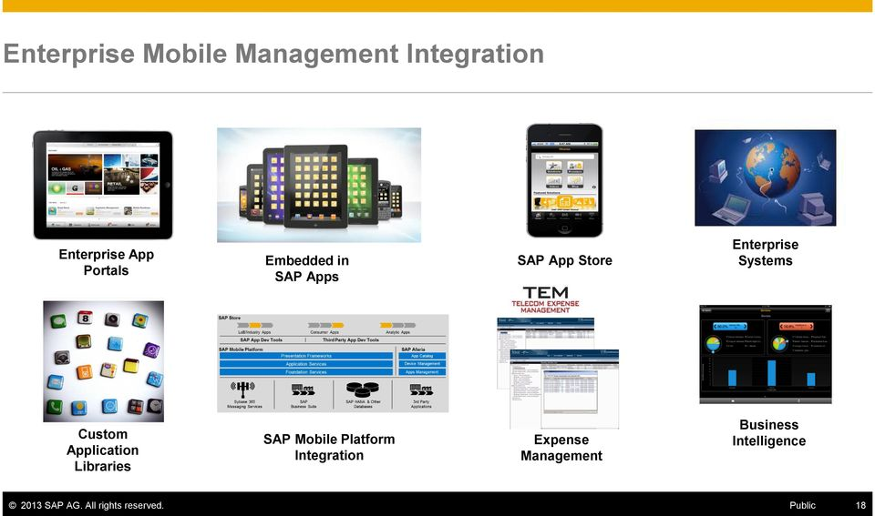 Application Libraries SAP Mobile Platform Integration Expense