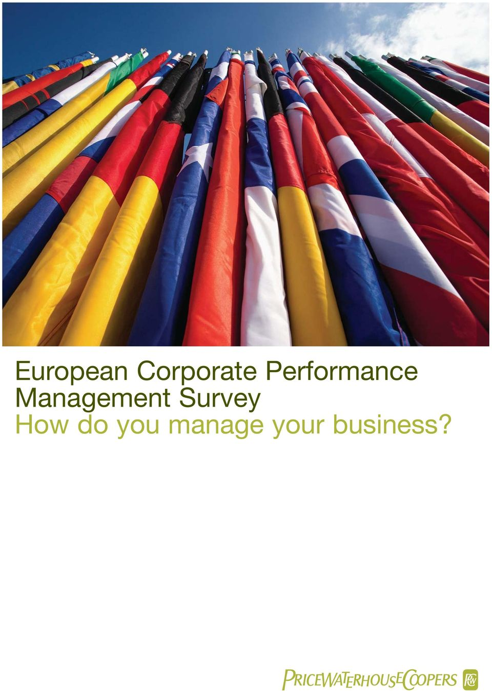 Management Survey How