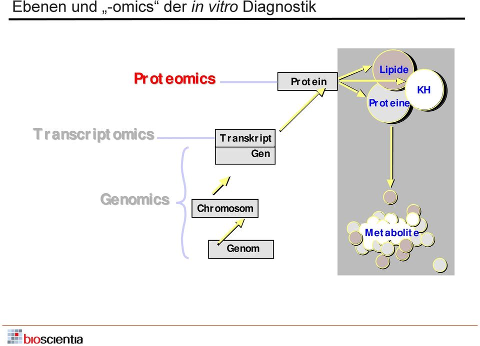 Proteine KH Transcriptomics