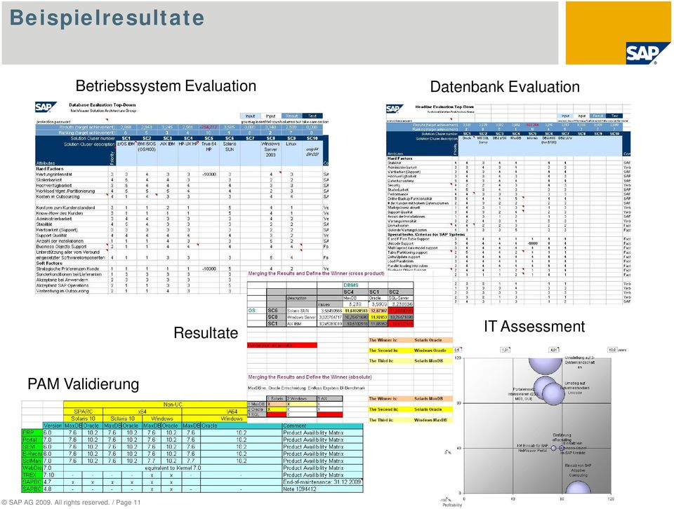Resultate IT Assessment PAM