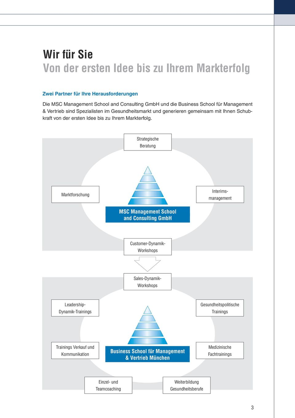 Strategische Beratung Marktforschung Interimsmanagement MSC Management School and Consulting GmbH Customer-Dynamik- Workshops Sales-Dynamik- Workshops Leadership-