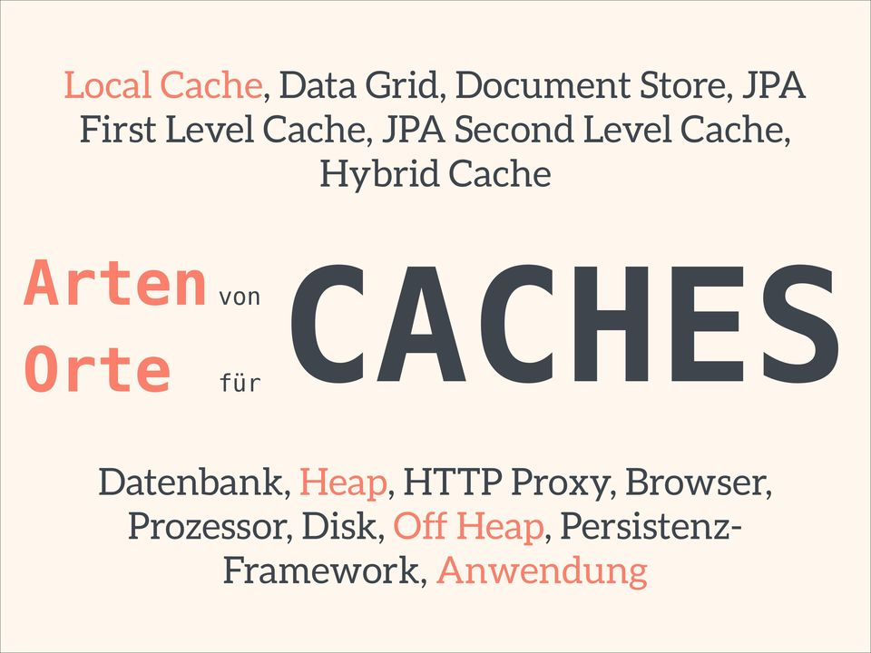 für CACHES Datenbank, Heap, HTTP Proxy, Browser,