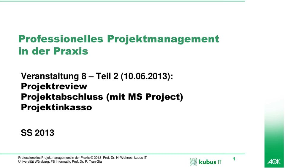 06.2013): Projektreview