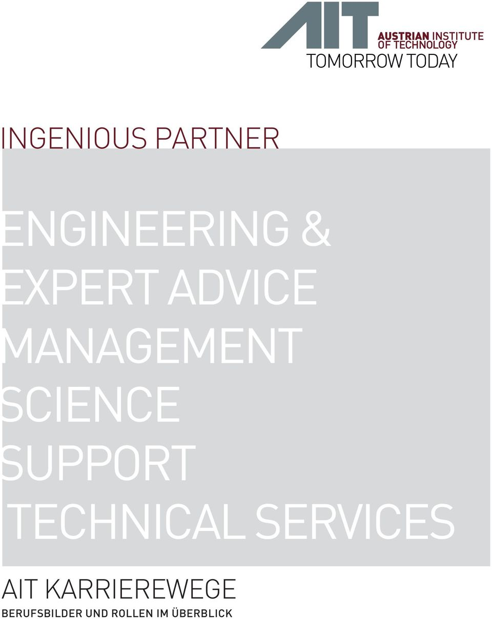 Support Technical Services AIT