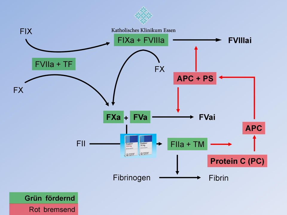 FII FIIa + TM Protein C (PC)
