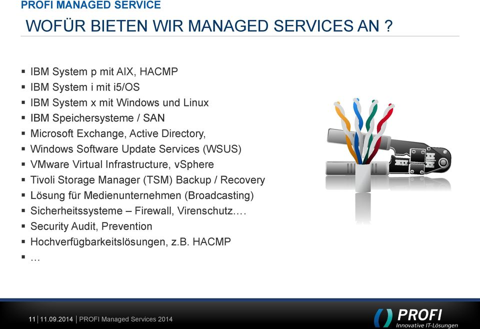 Exchange, Active Directory, Windows Software Update Services (WSUS) VMware Virtual Infrastructure, vsphere Tivoli Storage