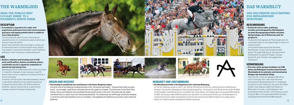 The natural aptitudes specific to each of the horses are assessed by means of a comprehensive system of performance testing on mares and stallions.