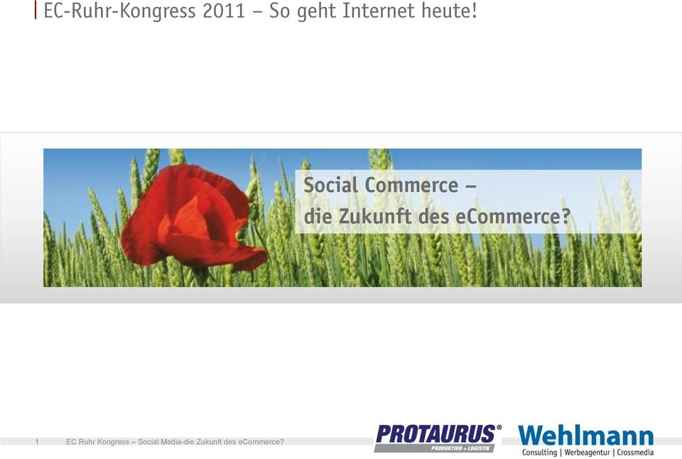 Social Commerce die
