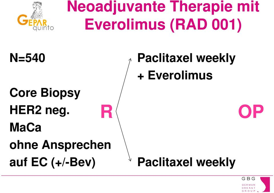Everolimus Core Biopsy HE2 neg.