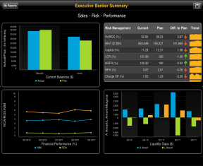Bankers Executive Dashboard Key Functions Provide executive bankers with a real time overview of the health of their organization Self service dashboards are available for the CEO, CFO, CRO, COO and