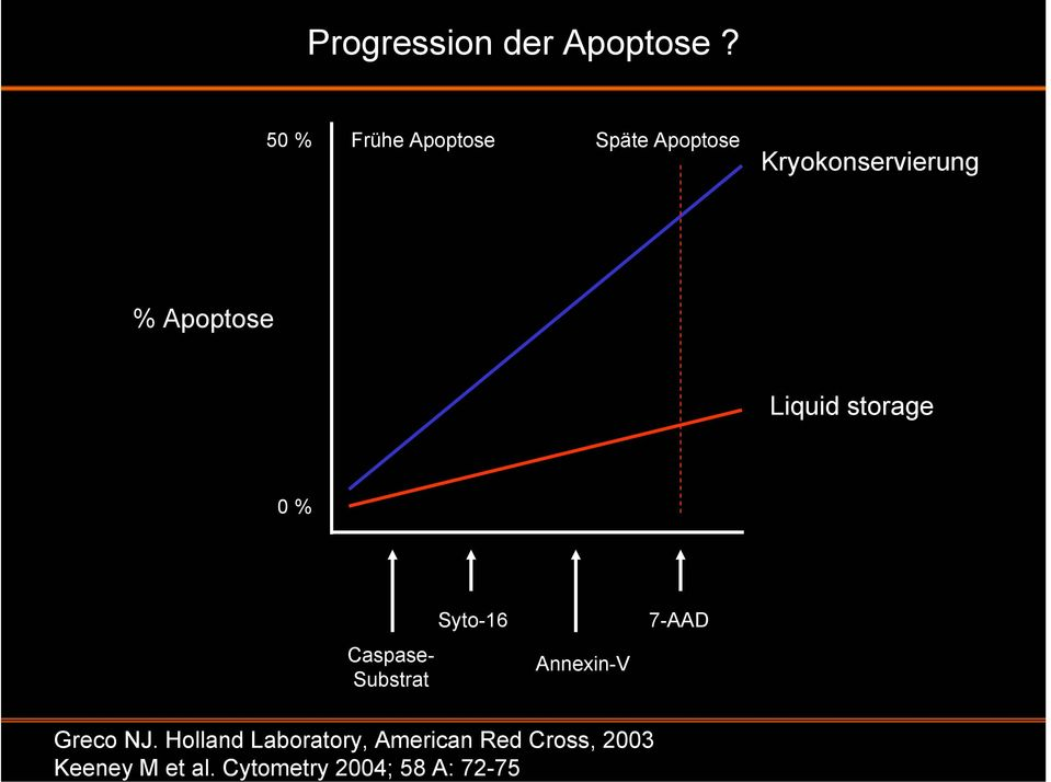 Cytometry 2004; 58 A: 72-75 Progression der Apoptose?