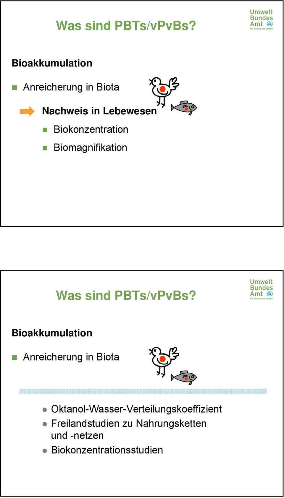 Biokonzentration Biomagnifikation  Bioakkumulation Anreicherung in