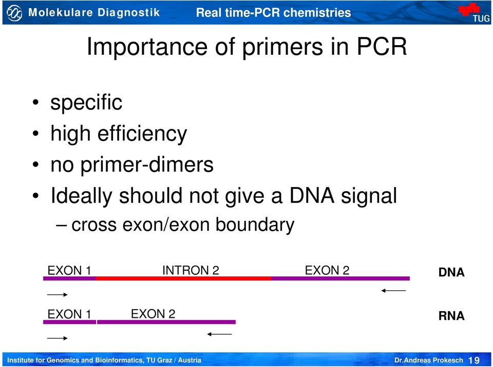 Ideally should not give a DNA signal cross