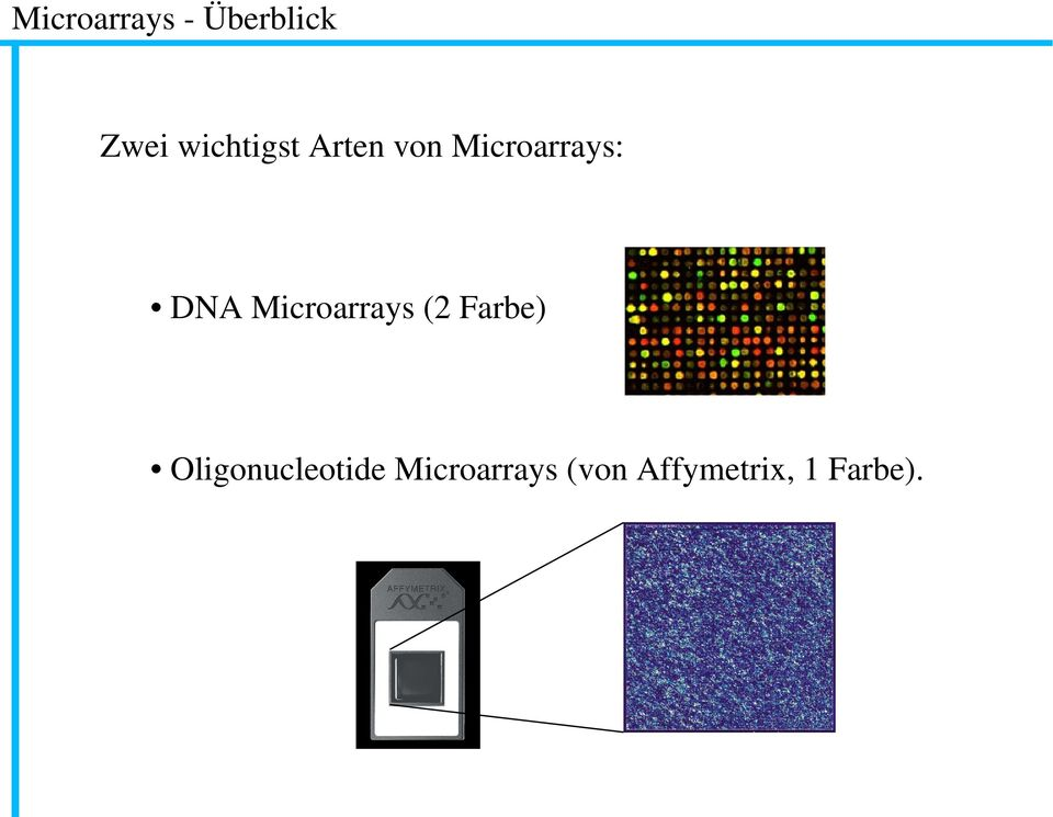 DNA Microarrays (2 Farbe)