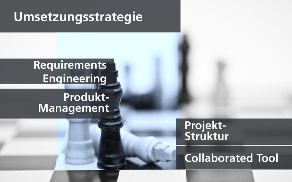Projektleiter/- teams Produkt- Management