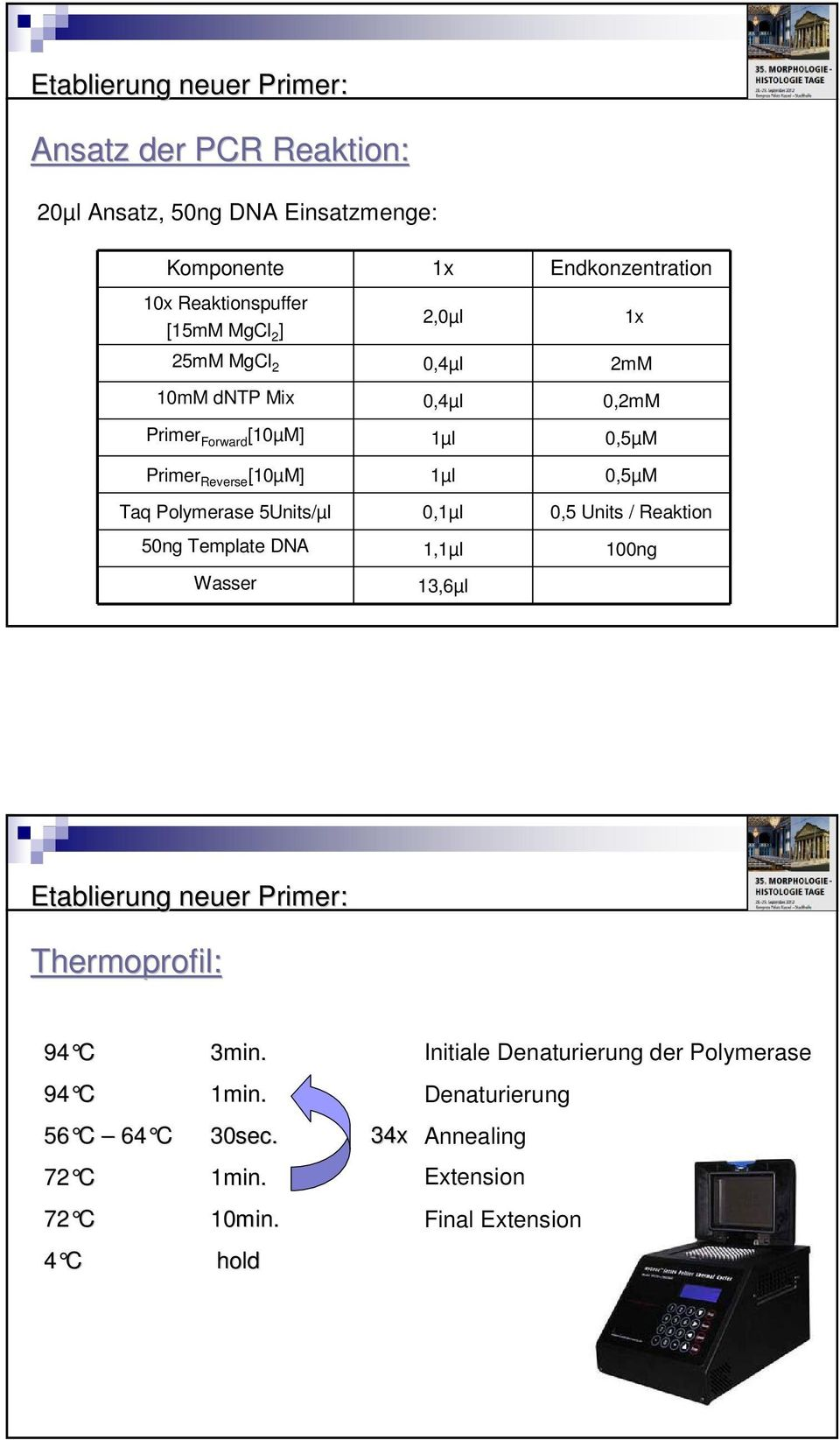 Polymerase 5Units/µl 0,1µl 0,5 Units / Reaktion 50ng Template DNA 1,1µl 100ng 1x Wasser 13,6µl Etablierung neuer Primer: Thermoprofil: 94 C