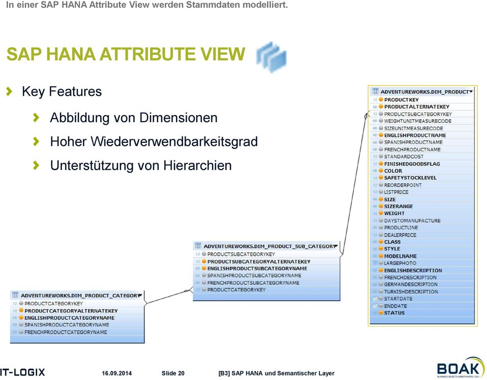 SAP HANA ATTRIBUTE VIEW Key Features Abbildung von
