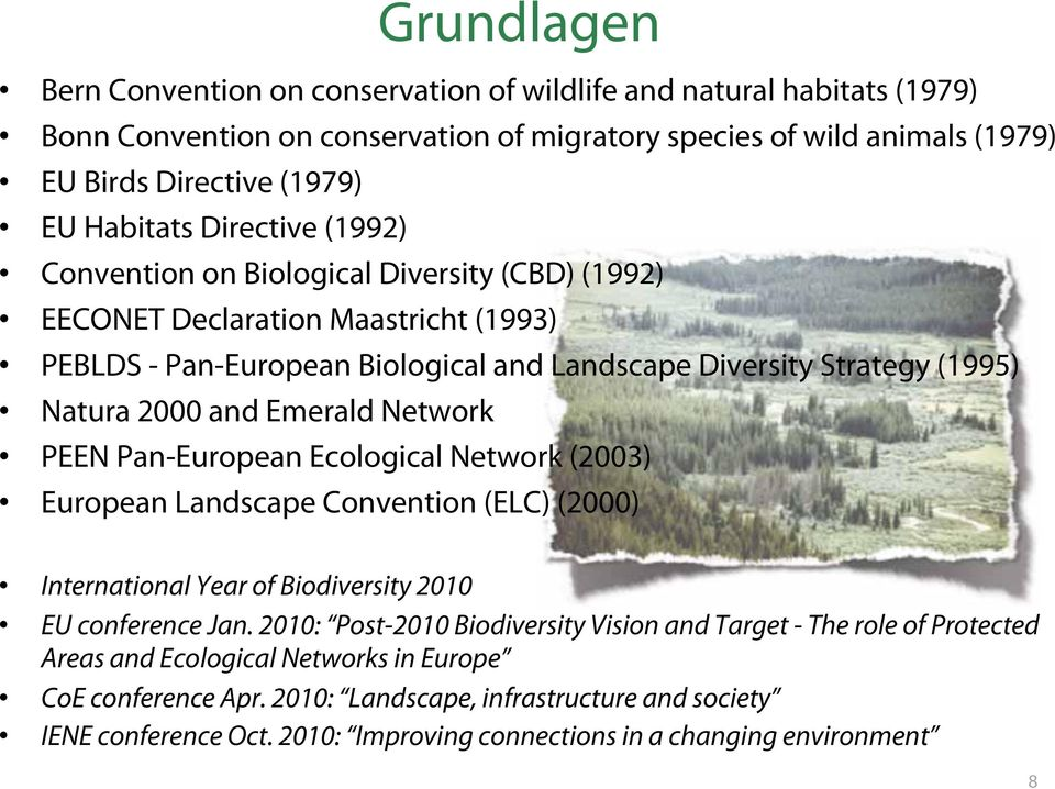 Network PEEN Pan-European Ecological Network (2003) European Landscape Convention (ELC) (2000) International Year of Biodiversity 2010 EU conference Jan.