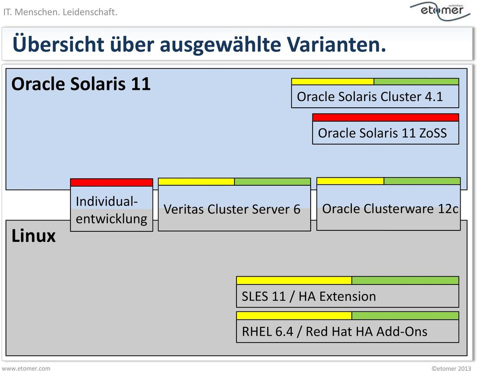 1 Oracle Solaris 11 ZoSS Linux Individualentwicklung
