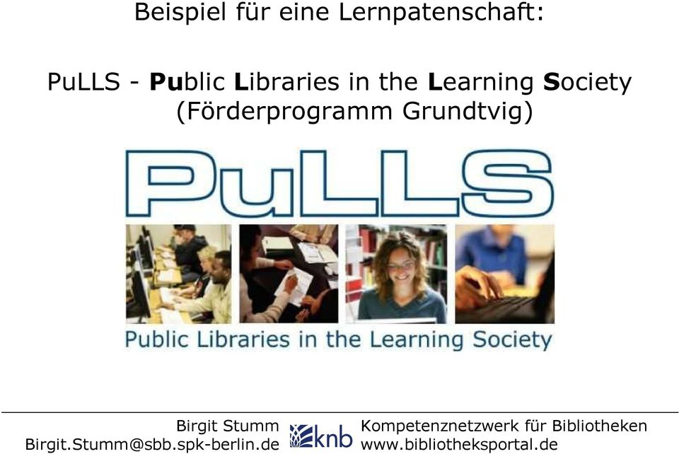Public Libraries in the