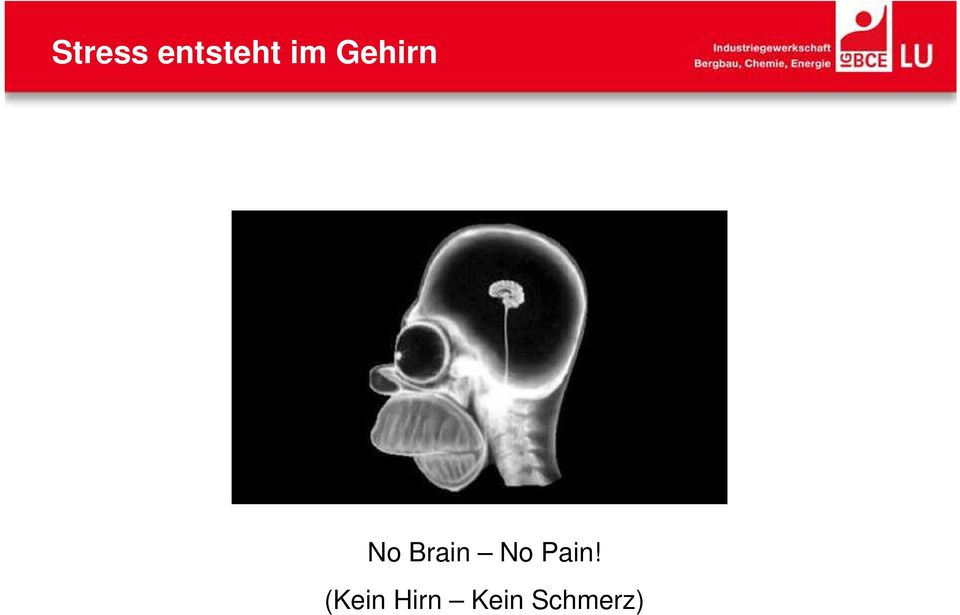 Brain No Pain!