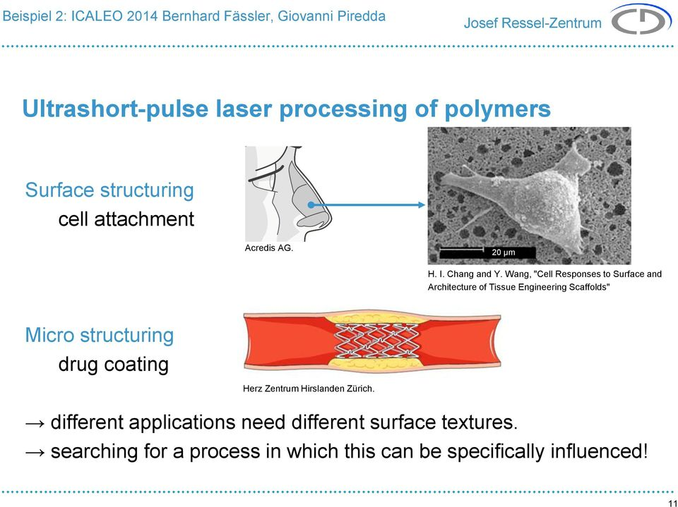"Wang, ""Cell Responses to Surface and Architecture of Tissue Engineering Scaffolds"" Micro structuring drug coating Herz"